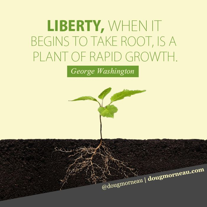 """Liberty, when it begins to take root, is a plant of rapid growth"". ~ George Washington I hope you enjoy the Quotes. I'd encourage you to share them, repost them, and comment. After all, social media is about being social which implies a dialogue, not a one sided conversation. Make it a great day - ""YOU Were Created for Greatness, Claim It!"" Doug Morneau - #fitCEO #motivation #leadership"