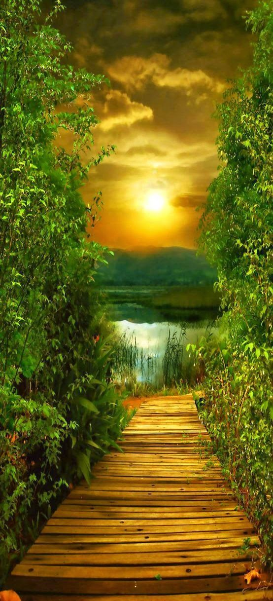 Janetmillslove Peaceful Pathway S Moment Love Beautiful Landscapes Beautiful Nature Nature Photography