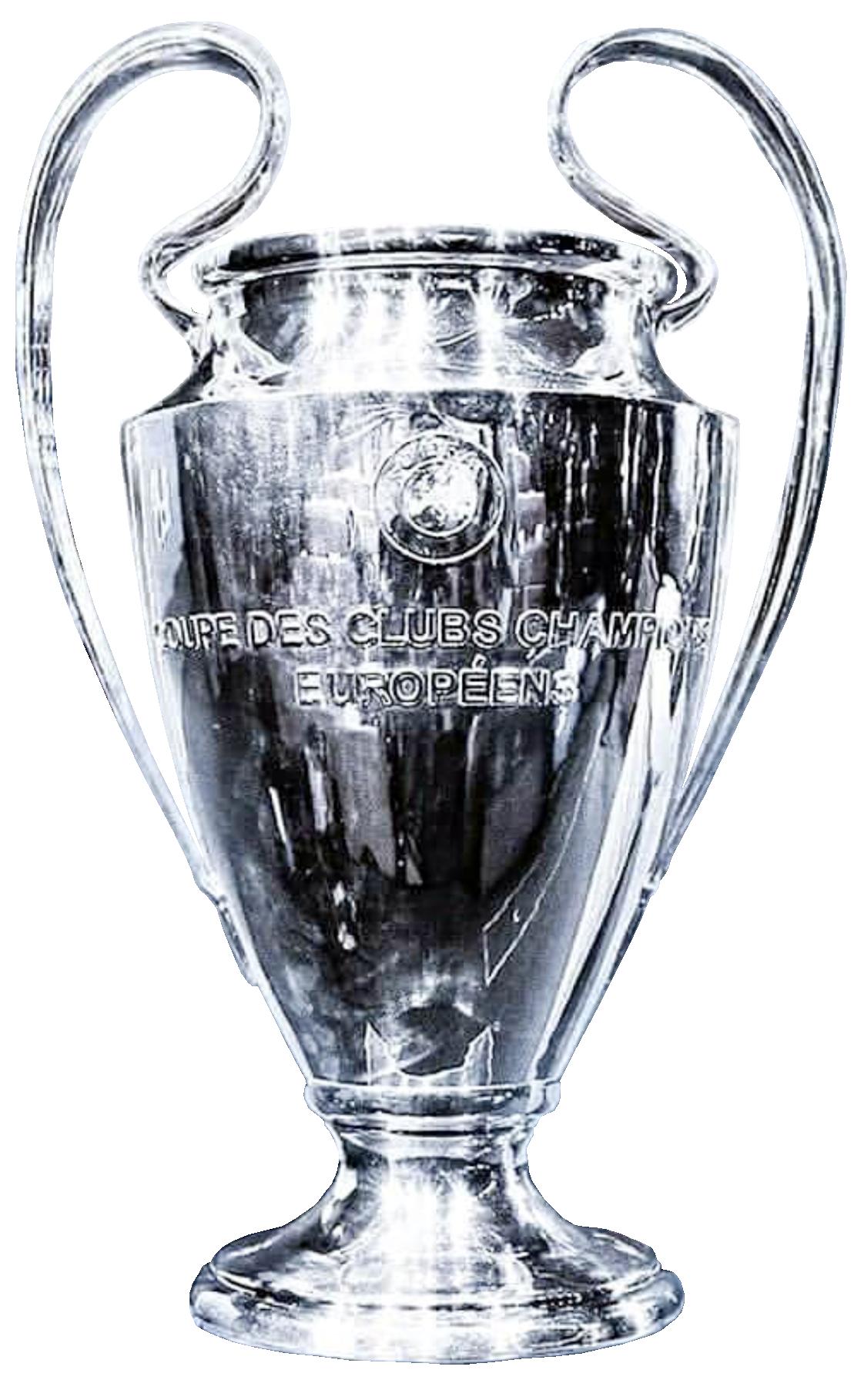 UEFA Champions League Winners Cup | Trofeu futebol, Taças ...