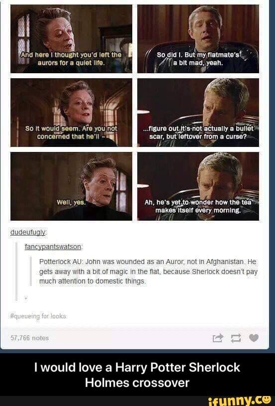 Crossover I would love a Harry Potter Sherlock Holmes – I would love a Harry Potter Sherlock Holmes crossover – iFunny :)
