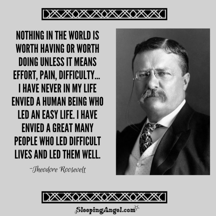 Theodore Roosevelt Action Quotes Action Quotes Roosevelt Quotes Theodore Roosevelt