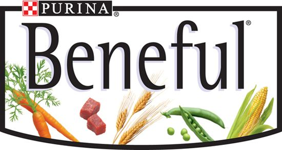 Purina Beneful Pet Food Food Recalls Dog Food Recipes Beneful