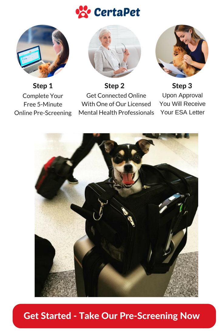 Emotional Support Animal Letter for Housing and Travel