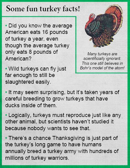 We've got some fun facts for Turkey Day! See all of our ...