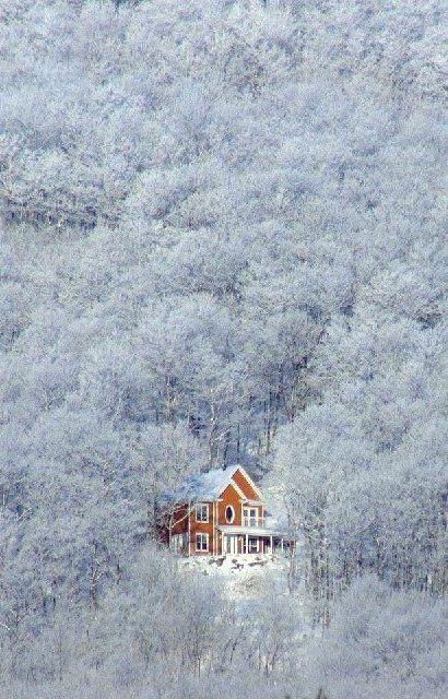 Lost In The Winter Winter Scenery Winter Scenes Winter Landscape