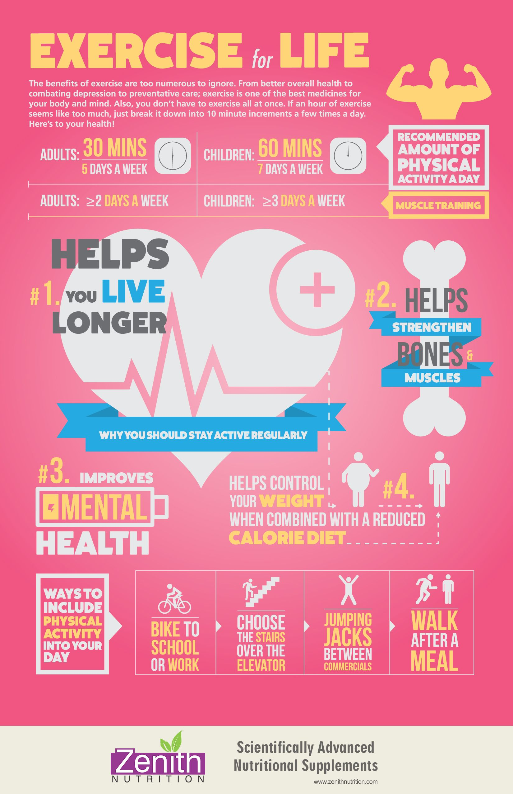 Exercise For Life. Recommended amount of physical  activity a day. Muscle training. Helps you live longer, helps strengthen bones & muscles, improves mental health, helps control your weight when combined with a reduced calorie diet. Ways to include physical activity into your day. Best supplements from Zenith Nutrition. Health Supplements. Nutritional Supplements. Health Infographics
