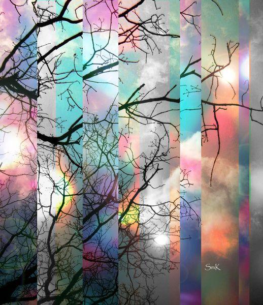 Perception by Suzanne Kurilla