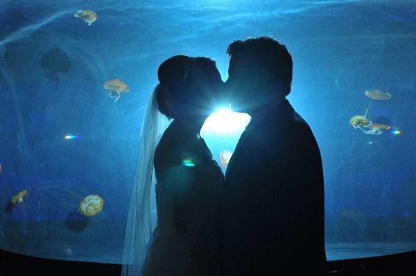 Vintage Travel Themed Wedding At Mandalay Bay S Shark Reef Aquarium Little Vegas Wedding Travel Theme Wedding Mandalay Bay Wedding Mandalay Bay