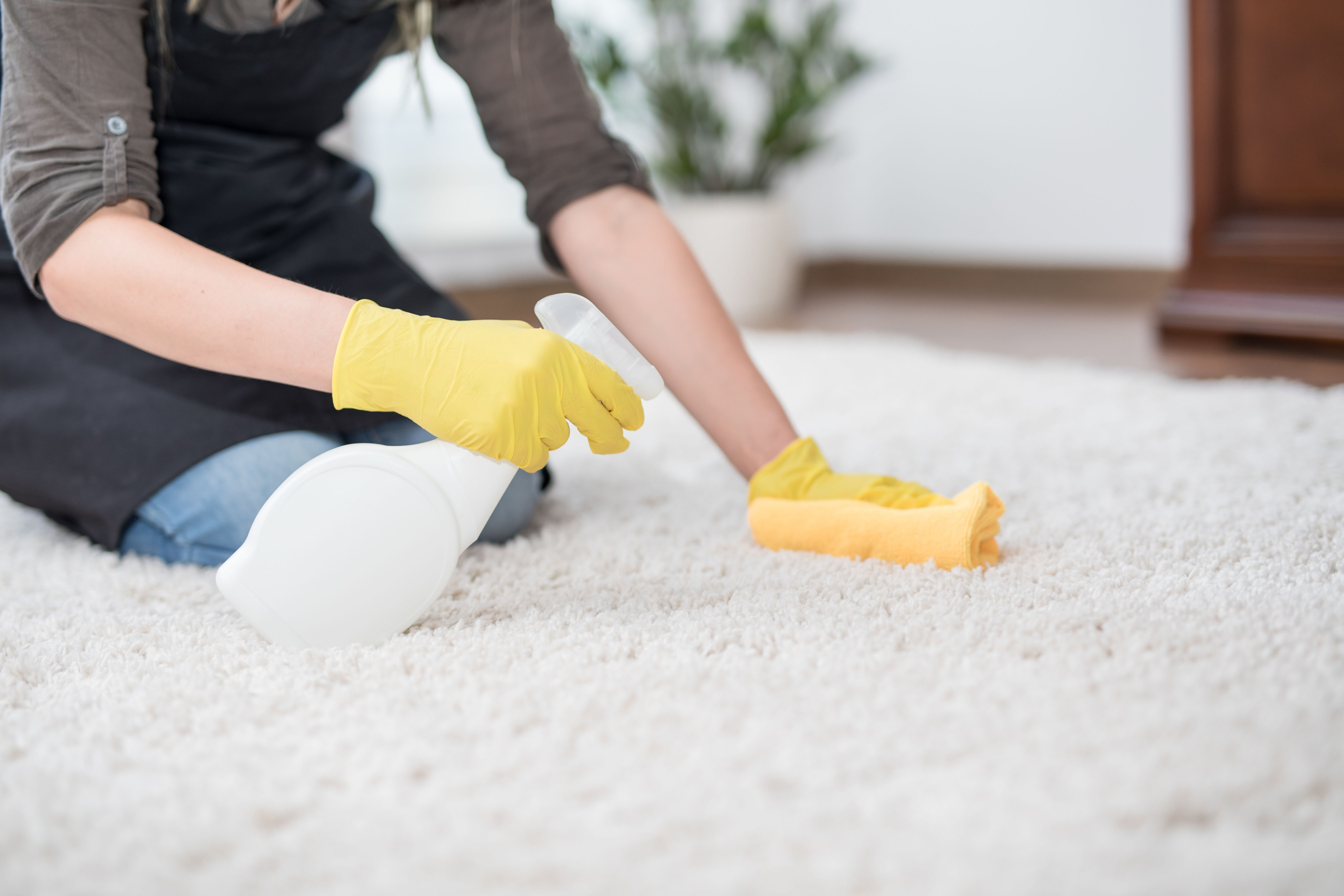 How to Get Rid of a Mildew Odor in Carpet Smelly carpet