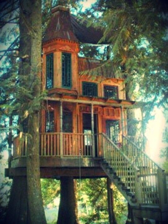 Pin by MaryAnn Randolph on TREEHOUSES are TERRIFIC | Cool