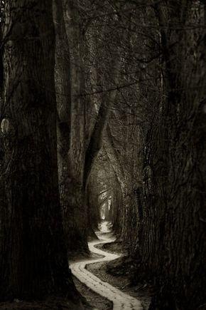 Hayat uzun ve çetrefilli bir yol… Birçoğunuz bu şartların kurbanı olduğu bilinciyle uyurgezer olarak yürüyor… Artık dönüşüm zamanı geldi de geçiyor. Bu yolun çıkmazları ve çukurlarında kaybolmak yerine, daha önce bunların her türünü …