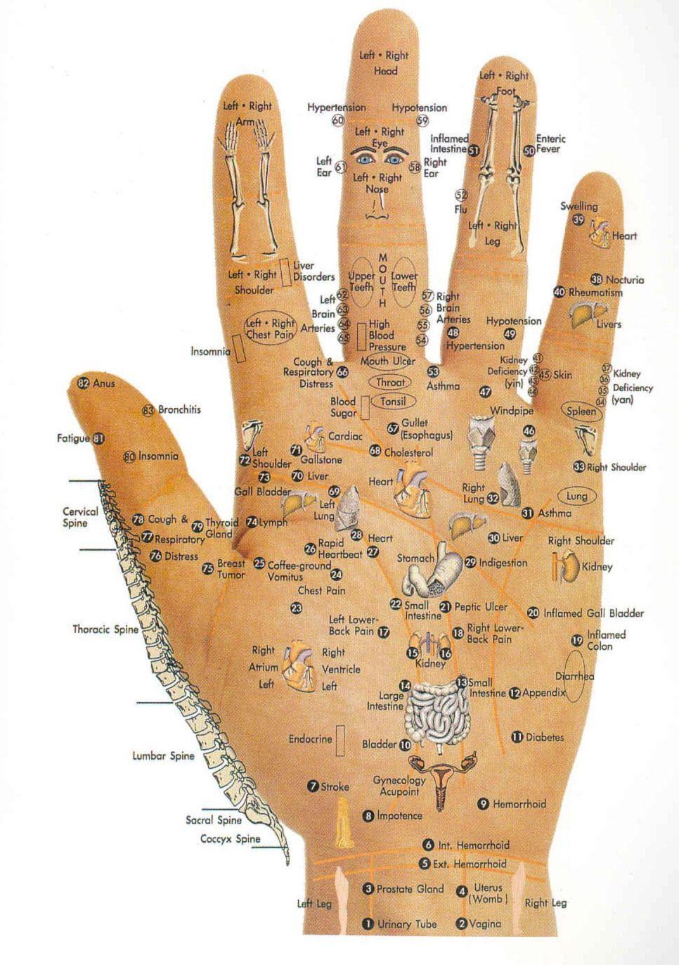 Acupressure healing healthy manners acupressure