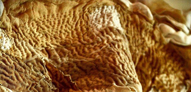 Gopika Nath, kantha - running stitch detail, 2013