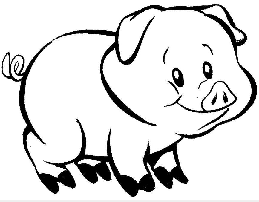 Desenhos Para Colorir De Porcos Porquinhos Fofos Para Pintar