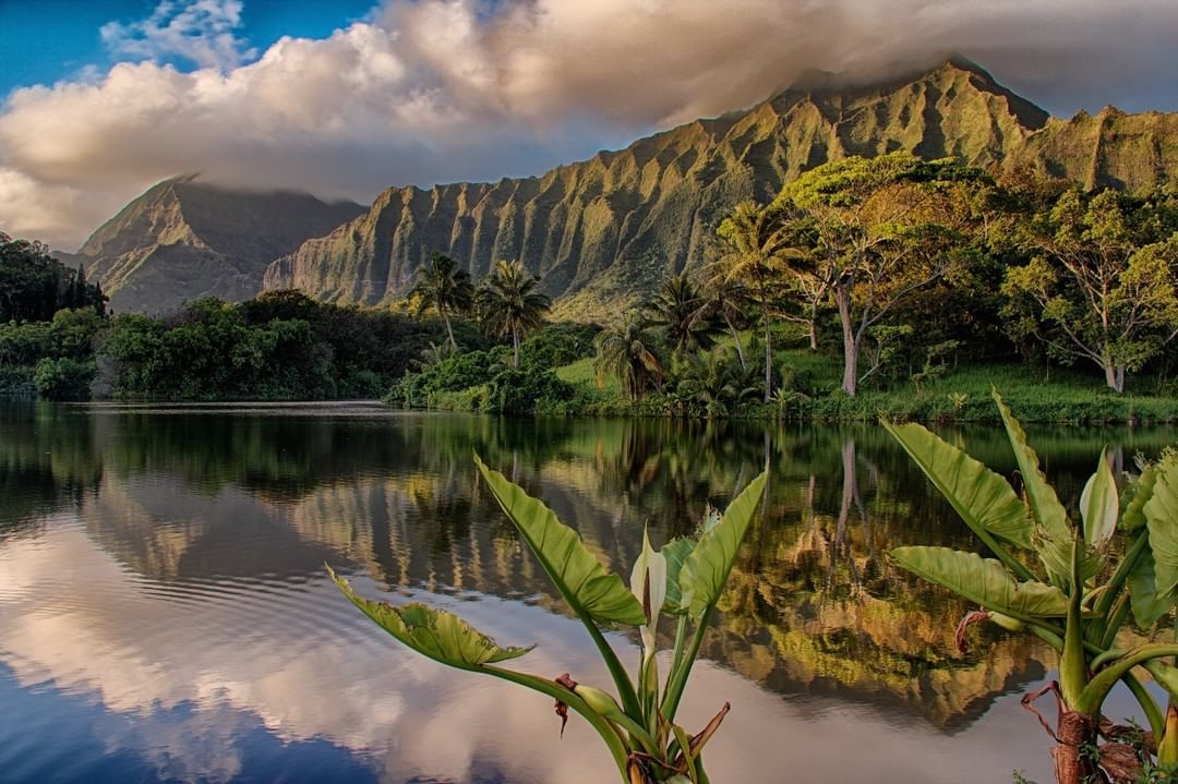 The Ho'omaluhia Botanical Gardens is one of the most