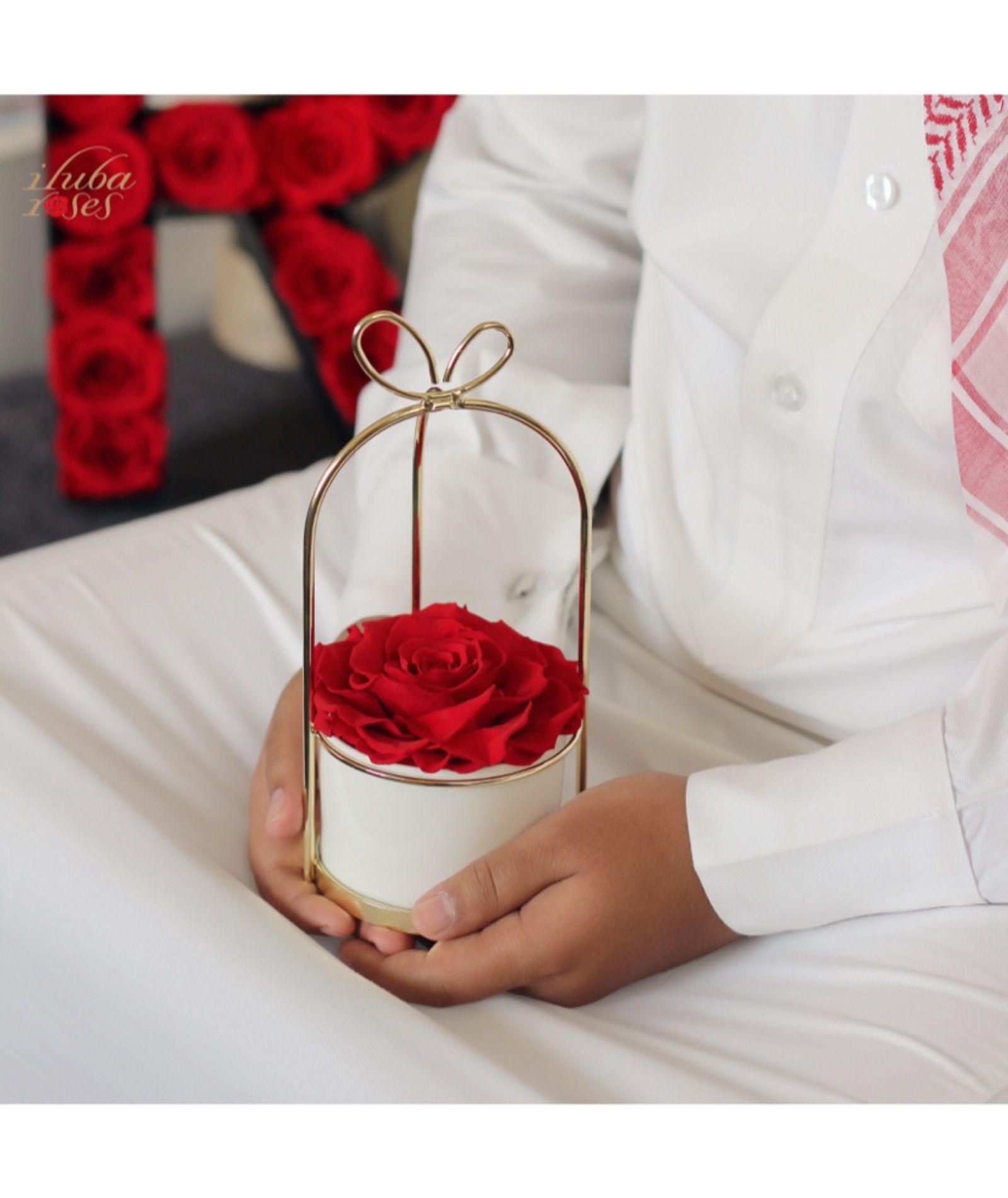 سلة فيونكة ورد ايلوبا روزز طبيعي دائم Ceramic Vase Rose Gift White Ceramic Vases