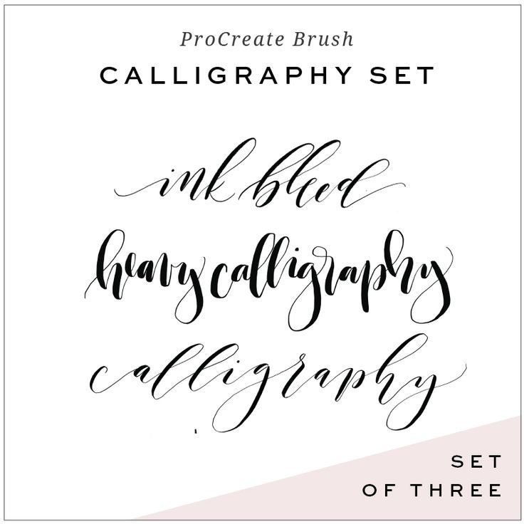 Calligraphy brushes for procreate app ipad lettering