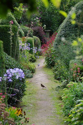 Wandering along the garden path