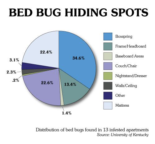 Bed Bugs Hiding Google Search Bed Bugs Bed Bug Bites Pictures Hiding Spots