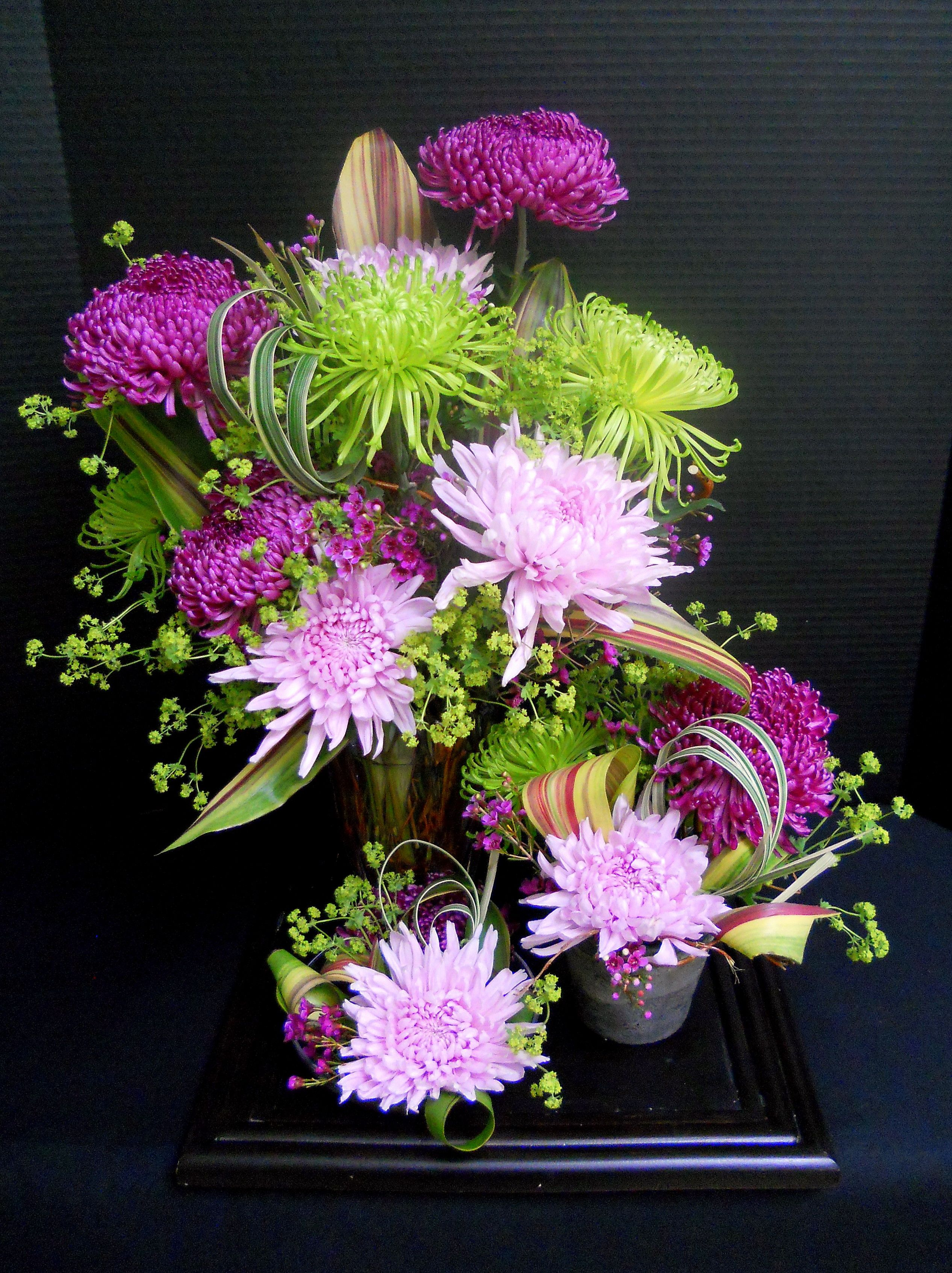 Creative Flowers White Plains Ny Best Flowers 2018