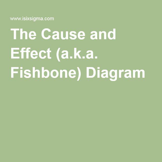 The Cause and Effect (aka Fishbone) Diagram Program - program evaluation