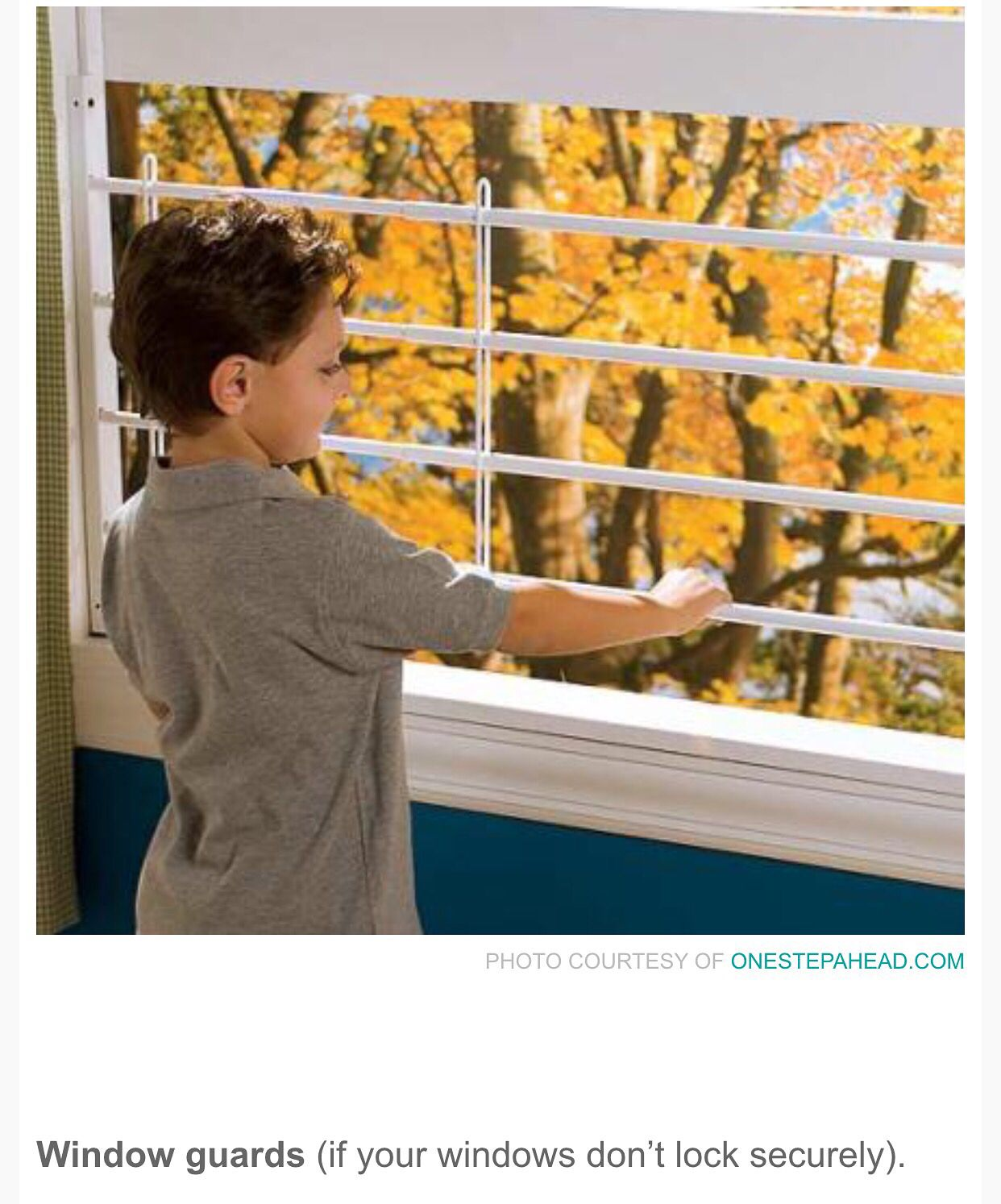 Autism Plus Wandering >> Pin By Thenatashabarber On Autism Safety Child Safety Home Safety
