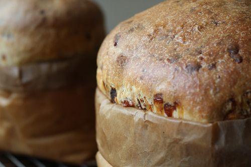 Casatiello: Italian Brioche - Sass and Veracity