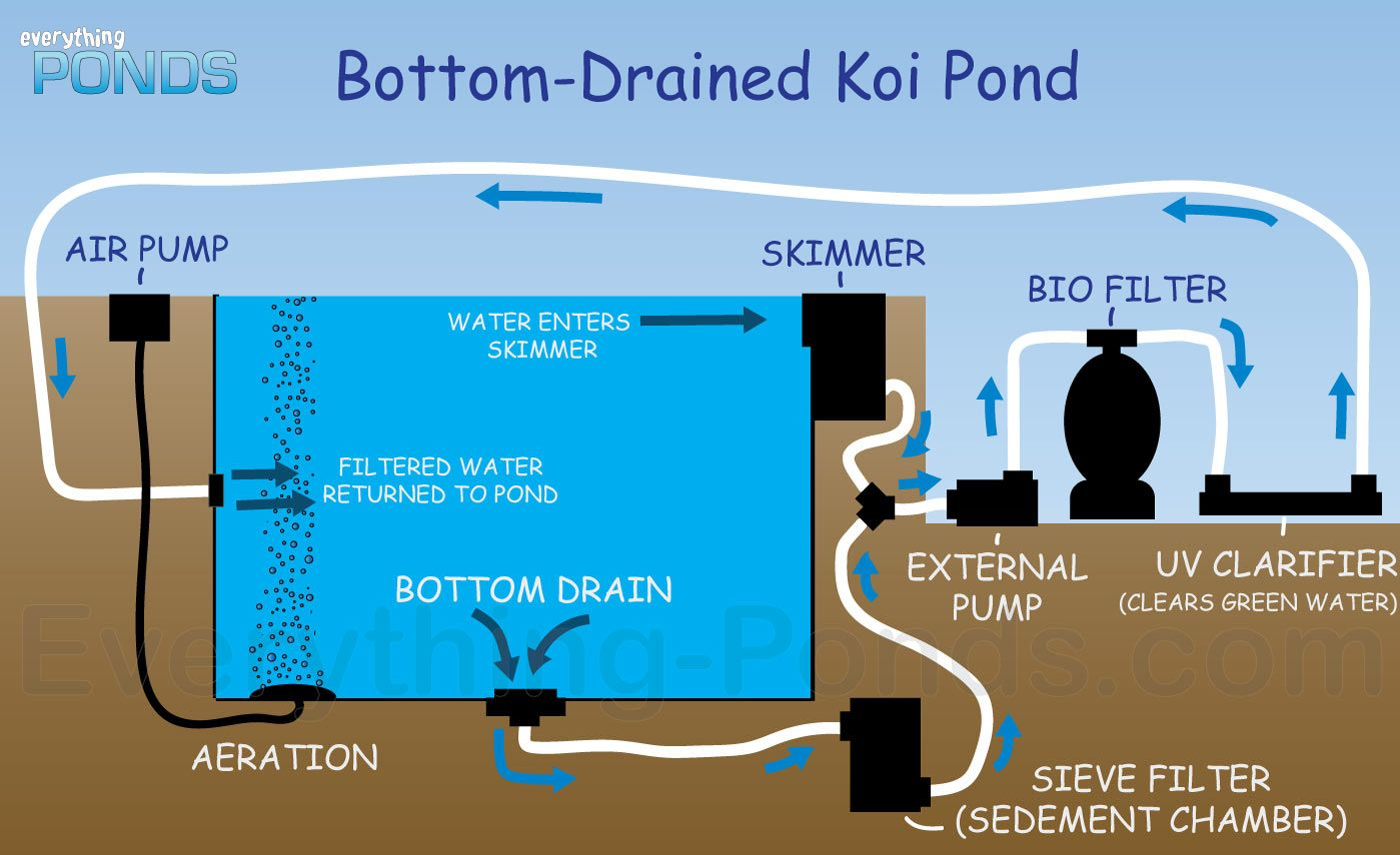 Everything ponds complete pond kits everything for Bottom drain pond filter