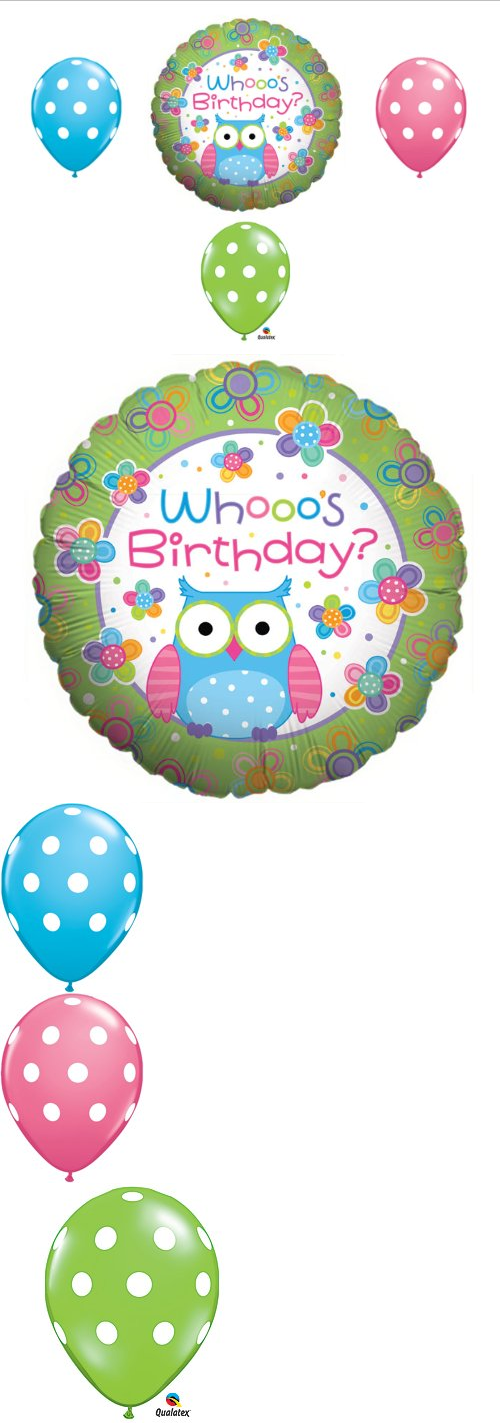 Whooo s birthday owl party balloons decorations supplies