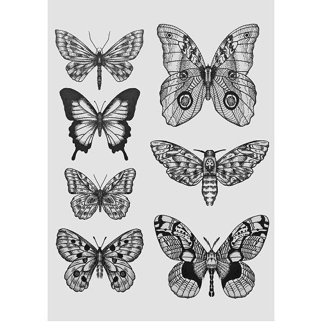 Pin De Emily Bolger Em Tattoos Com Imagens Tatuagem Borboleta Fazer Uma Tatuagem Insect Tattoo