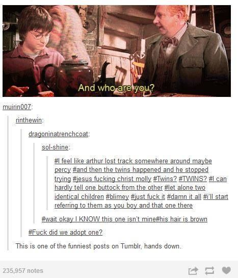 And Who Are You Harry Potter Universal Arthur Weasley Harry