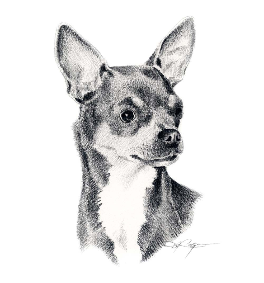 200 Dibujos Impresionantes A Lapiz A Byn Color Megapos En Taringa In 2020 Chihuahua Drawing Dog Art Dog Print Art