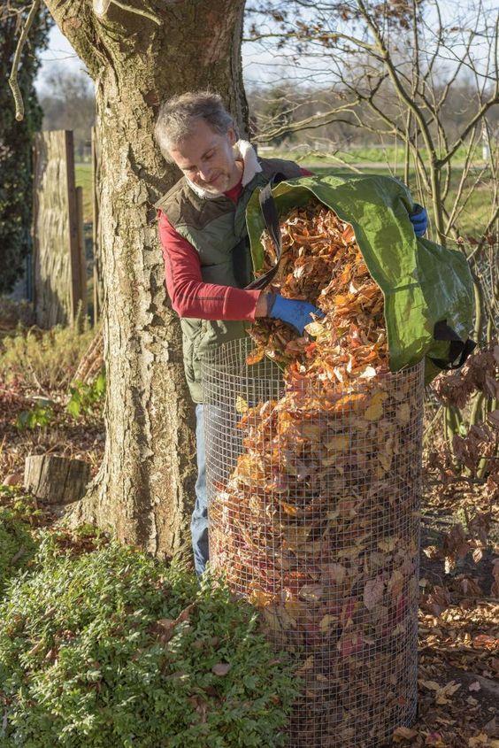 Herbstlaub sinnvoll verwenden