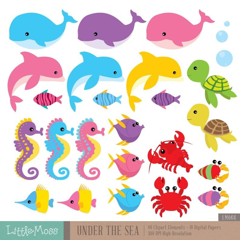 Under The Sea Digital Clipart And Papers Sea Animals Clipart Etsy Starfish Clipart Animal Clipart Clip Art
