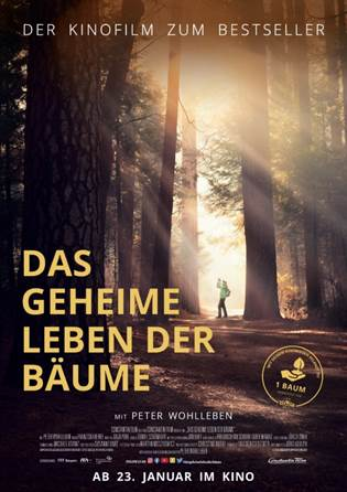 Kinomeister Das Geheime Leben Der Baume Filme Stream Filme Constantin Film