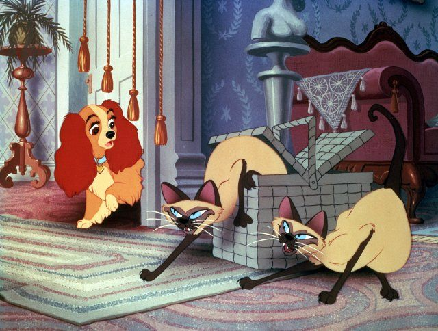 Pictures Photos From Lady And The Tramp 1955 Lady And The Tramp Disney Cats Old Disney