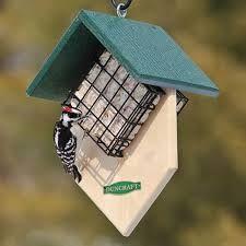 Image Result For Homemade Suet Feeder Plans Squirrel Proof Suet Bird Feeder Bird House Feeder Bird Houses Diy
