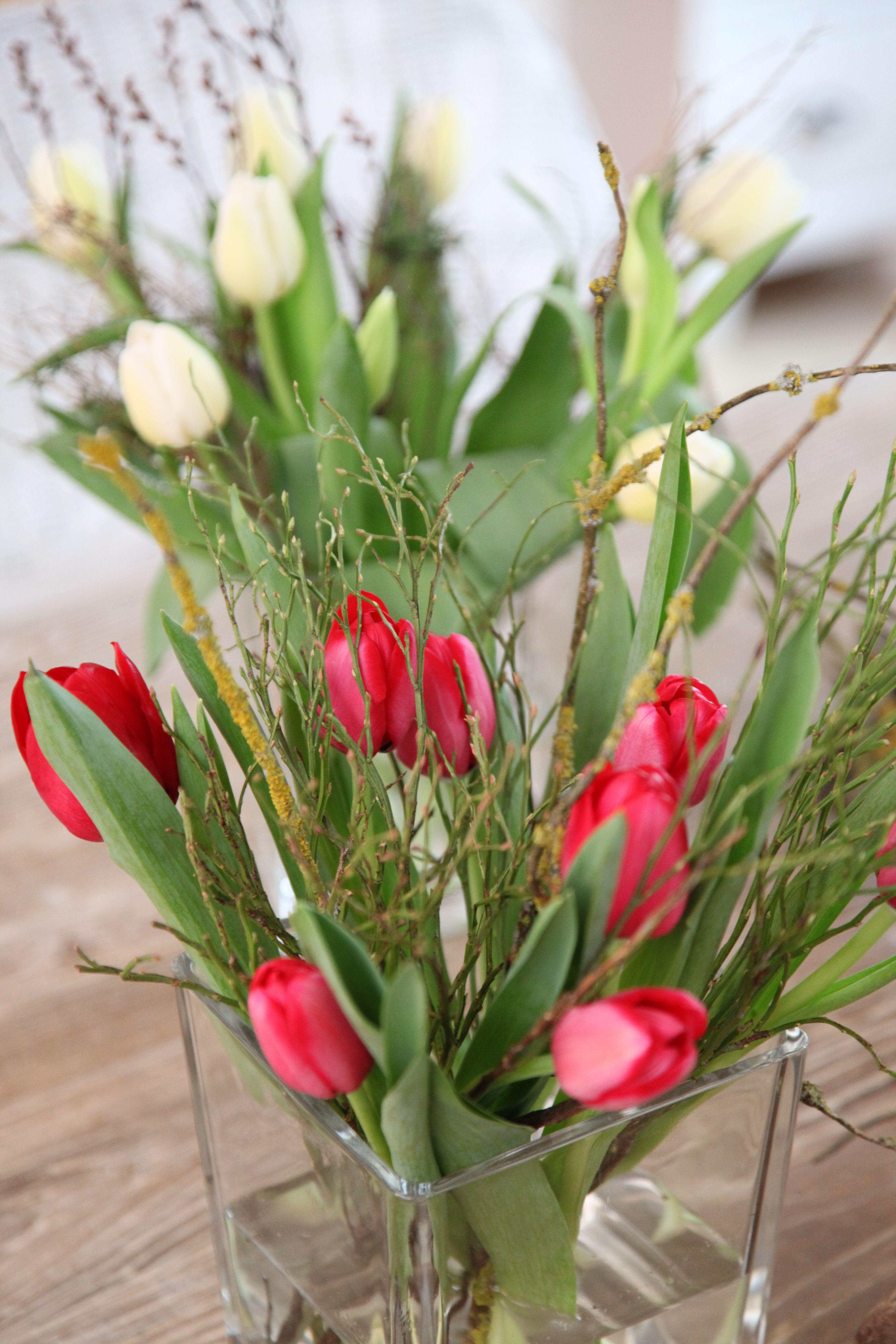 Damit Ein Bund Tulpen Den Man Schon Sehr Gunstig An Den Supermarkt Kassen Erstehen Kann Prachtig Zur Geltung Kommt Braucht Es Nur In 2020 Tulpen Fruhling Dekorieren