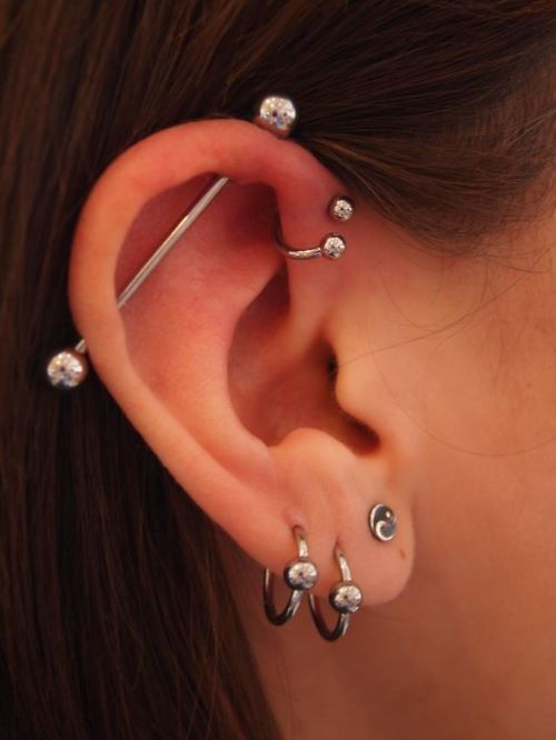 Sterling silver piercing with tiny bee - cartilage