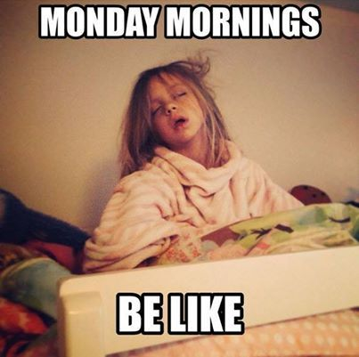 Struggled To Get Your Kids Up This Morning Happy Monday Monday Mondaymornings Coffee Getup Monday Humor Funny Monday Memes Hump Day Humor