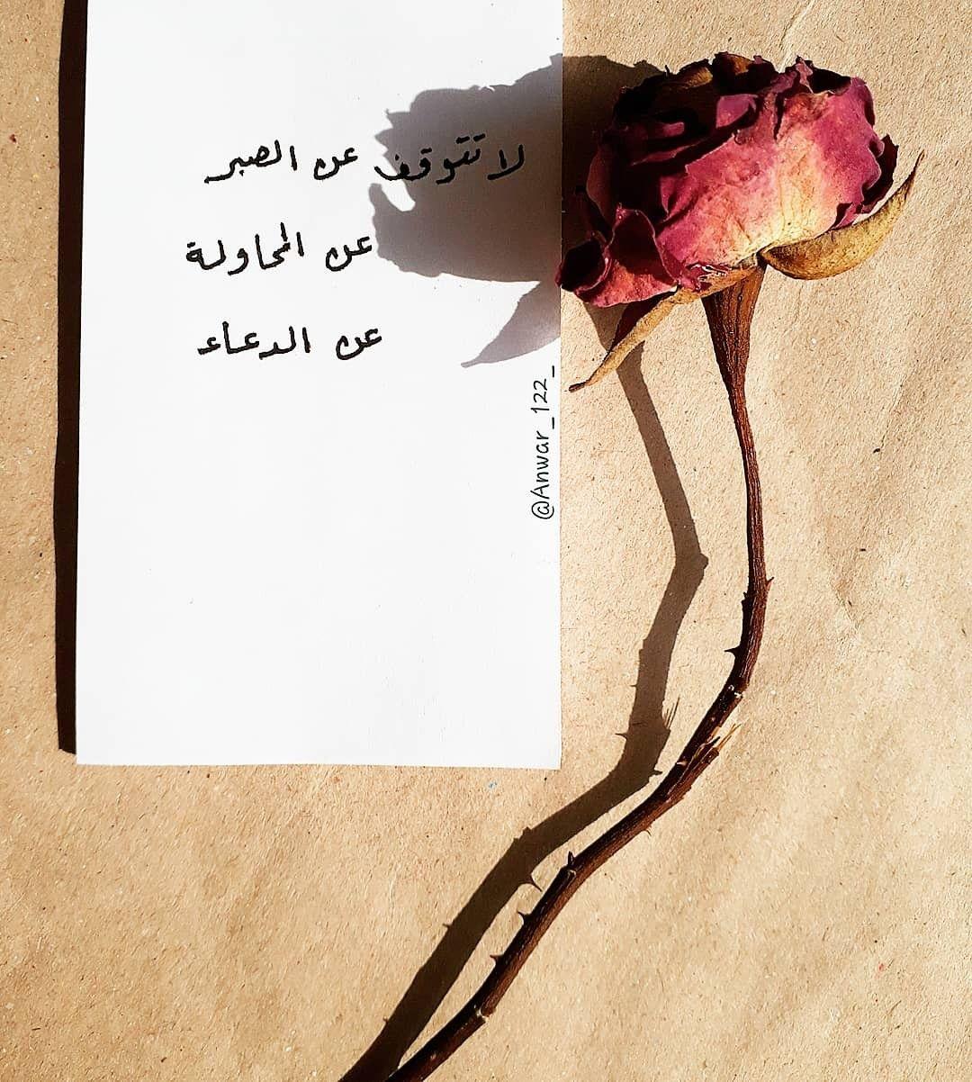 لا تتوقف عن الصبر عن المحاولة عن الدعاء Positive Notes Quotations Arabic Words