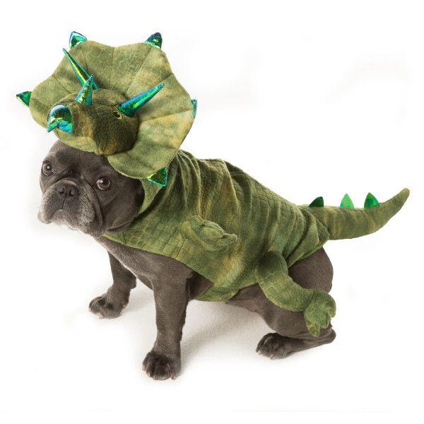 Null Dog Dinosaur Costume Pet Halloween Costumes Pet Costumes