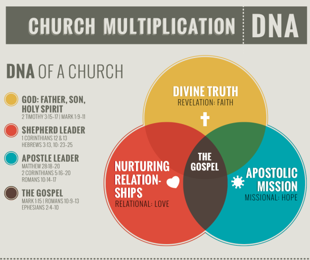Rough Draft Church Dna Infographic Church Branding Church Infographic