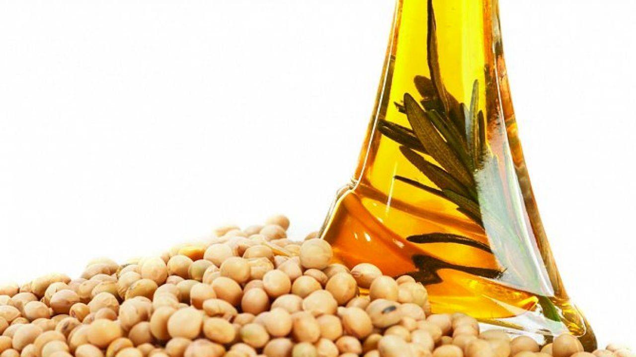 فوائد زيت فول الصويا In 2020 Soybean Oil Benefits Oil Benefits Soybean Oil