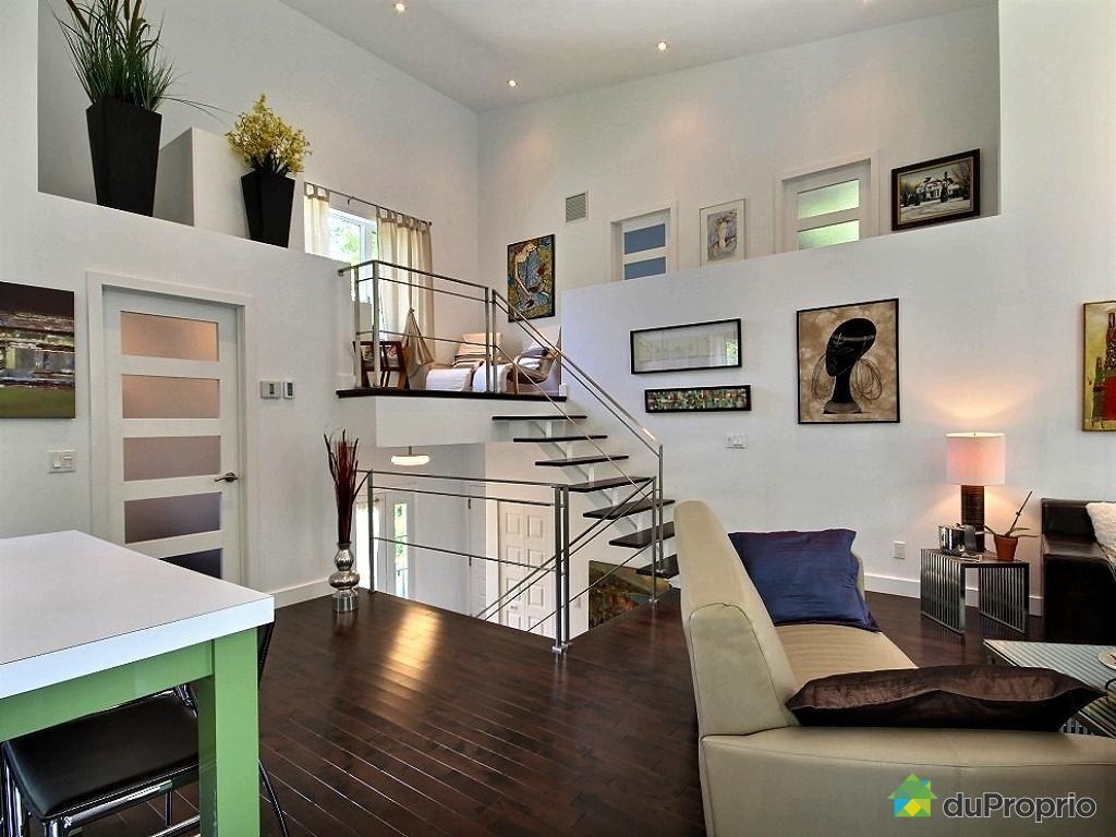 maison demi niveau recherche google jeux de niveaux. Black Bedroom Furniture Sets. Home Design Ideas