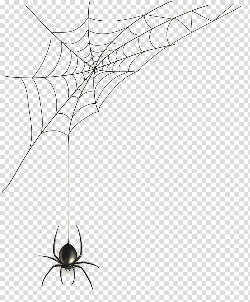 Spider Web Spider Transparent Background Png Clipart Spider Web Drawing Spider Cartoon Spider Web