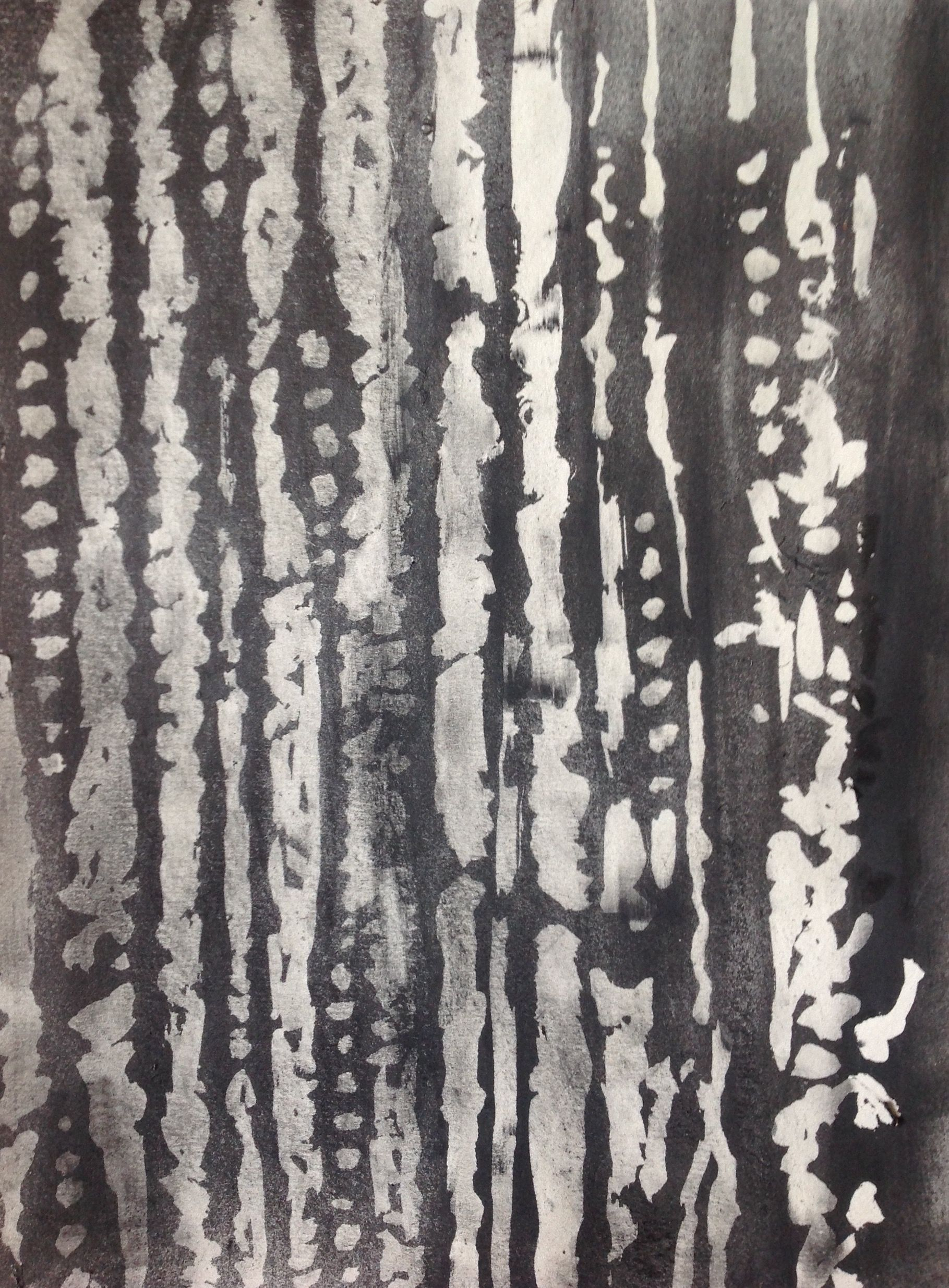 Wood cell drawing Drew light areas with masking fluid, used spraymount to fix ground-up condensed charcoal, then removed mask.