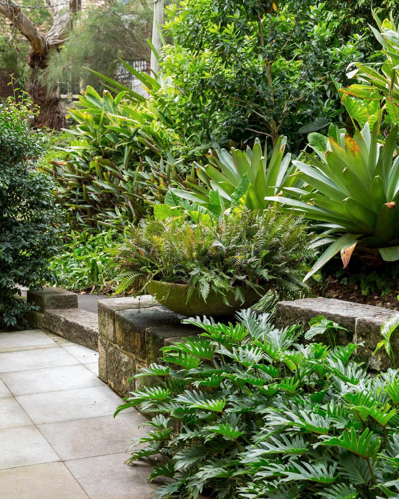 Native Home Garden Design: Plant / Life: Michael Bates