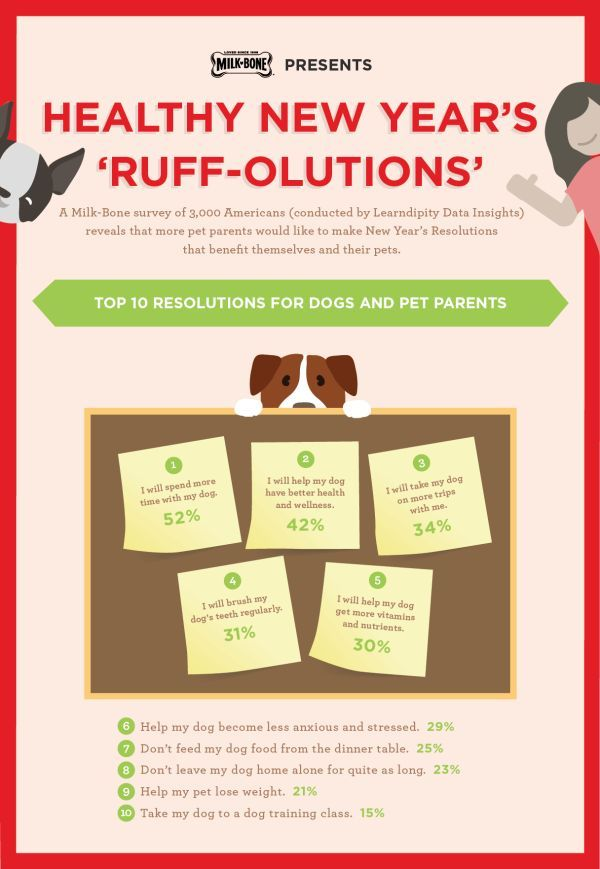 Did you make New Year's resolutions for your dogs? Check out the top resolutions made by pet parents, plus tips from Milk-Bone on how you can keep them!
