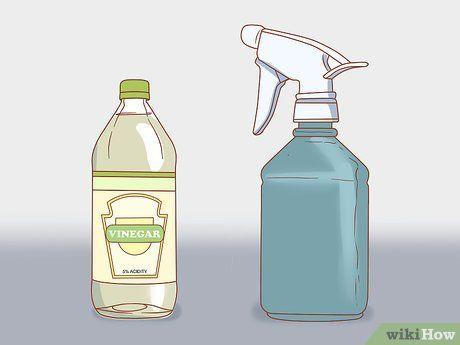 Remove Bathroom Mold | Mold in bathroom, Cleaning bathroom ...